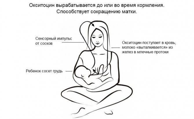 Кормление грудью после кесарева сечения: правила и запреты