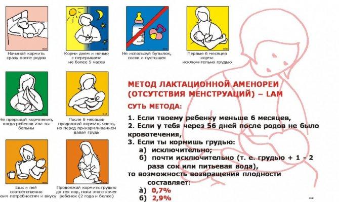 Лактационная аменорея: что это, длительность и беременность