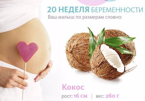 21 неделя беременности (60 фото): что происходит с малышом и мамой, сколько это месяцев, 20-21 акушерская неделя, развитие и ощущения на 19 неделе от зачатия