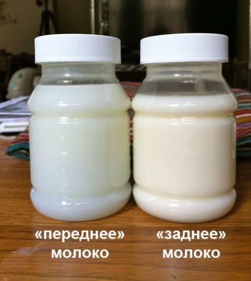 Почему грудное молоко стало соленым на вкус, что делать?