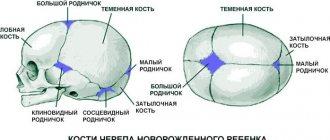 Пульсирует родничок у грудничка: норма или патология? - doctor-lurye.ru