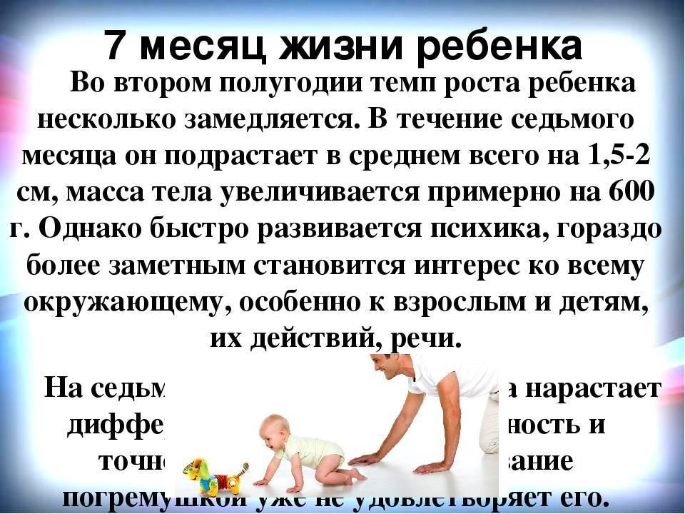 Развитие ребенка в 7 месяцев (девочка): нормы, советы доктора комаровского