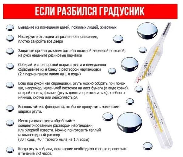 Без паники: что делать, если разбился ртутный градусник - истории - u24.ru