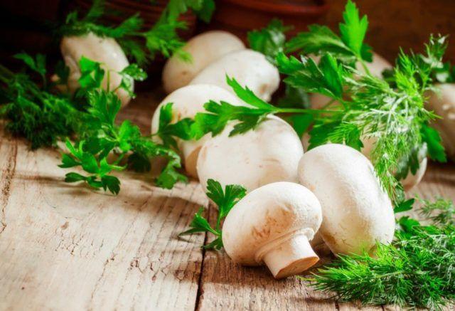Можно ли кормящей маме есть грибы: польза и вред шампиньонов, маринованных и жареных грибочков при лактации