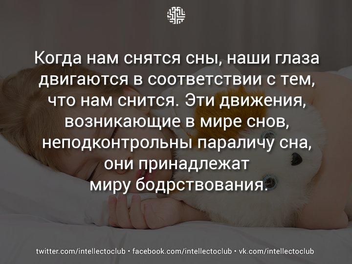 Сонник постоянно снятся дети. к чему снится постоянно снятся дети видеть во сне - сонник дома солнца