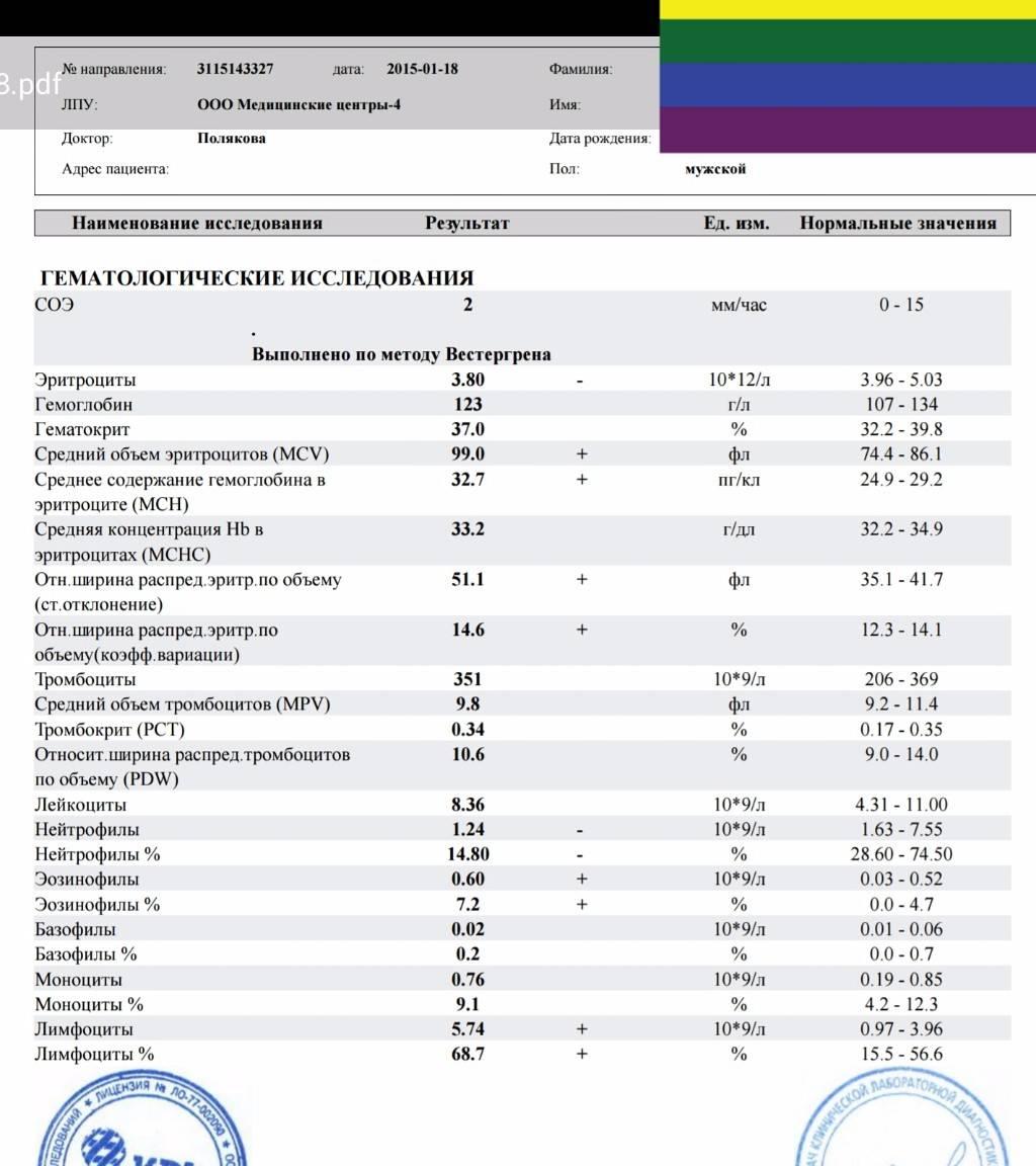 Причины повышения сегментоядерных нейтрофилов, способы диагностики и лечения