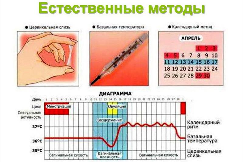 Овуляция при приеме, после отмены противозачаточных таблеток