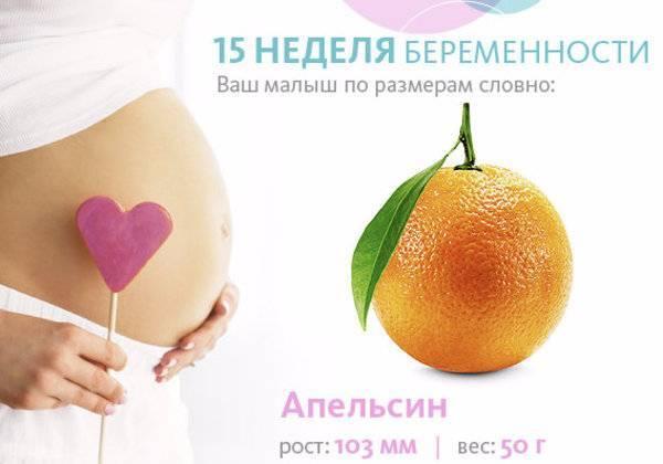 Особенности 21 недели беременности
