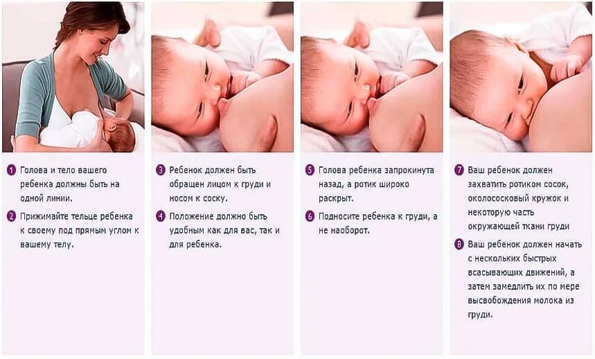Как правильно кормить новорожденного кроху грудным молоком: прикладывание к груди, кормление по часам и по требованию