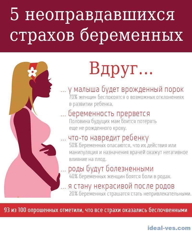 Почему с беременными не спорят и другие вопросы про беременность   милосердие.ru