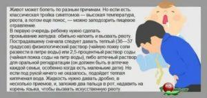 У ребенка рвота и понос: причины, диагностика, лечение, диета, профилактика