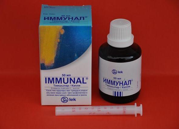 Иммунал для детей: инструкция по применению средства и описание действия препарата (115 фото)