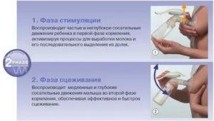 Как правильно сцеживать грудное молоко руками: 6 правил, 2 совета врача