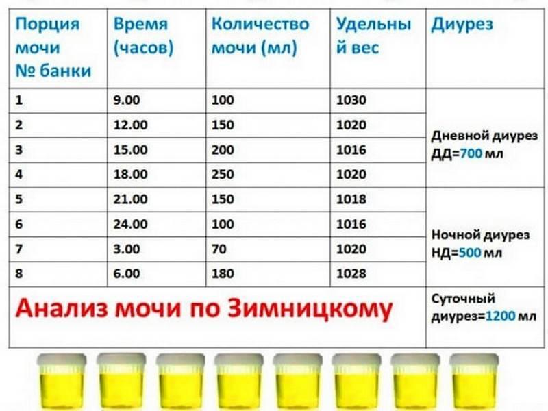 Проба зимницкого: норма, расшифровка анализа, как собирать мочу. что позволяет определить проба зимницкого? :: syl.ru