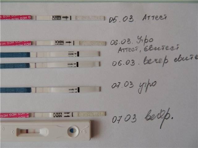 Выделения при беременности на ранних сроках