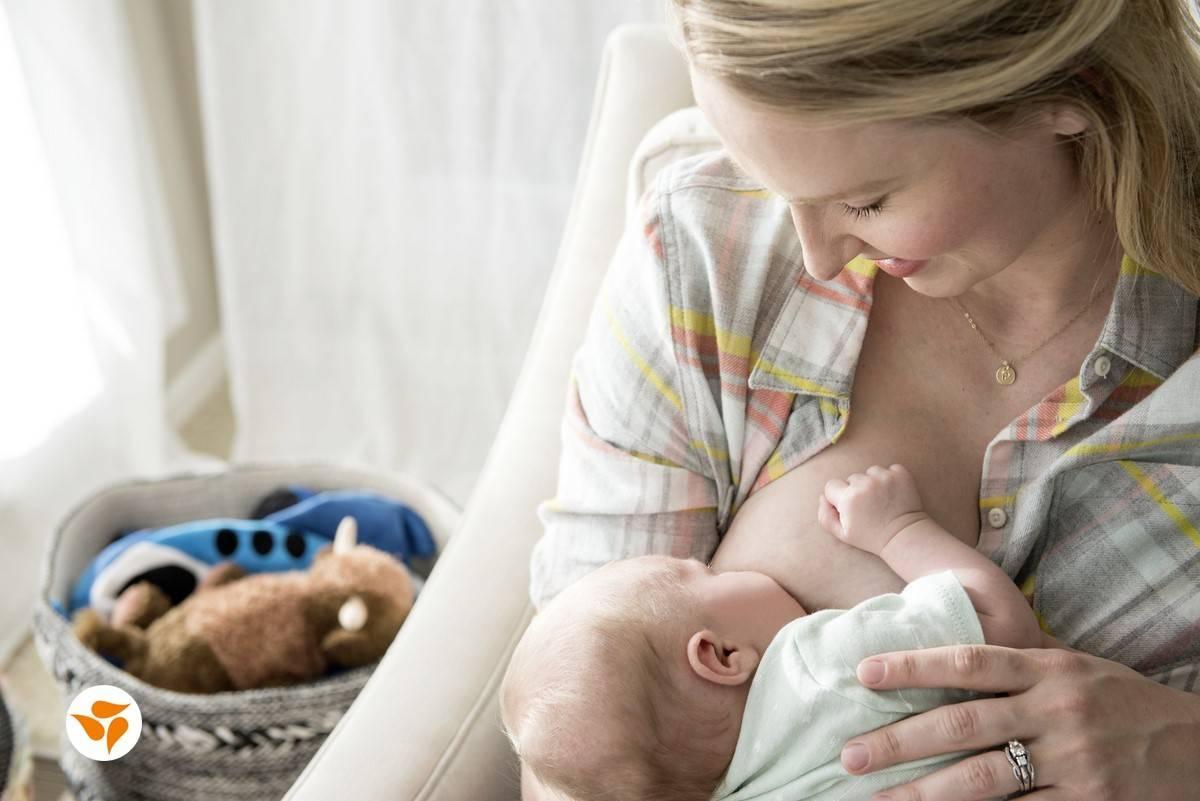 Как правильно завершить грудное вскармливание для мамы, все тонкости и нюансы   итс кидс