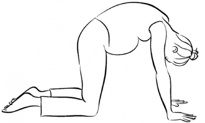 Как правильно делать коленно-локтевое положение при беременности?