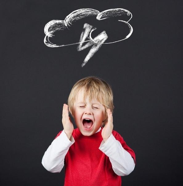 2 типа истерик у детей (истерика верхнего и нижнего мозга) и правильная реакция родителей
