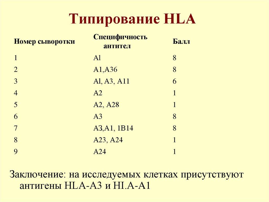 Анализ крови на типирование hla 2 класса