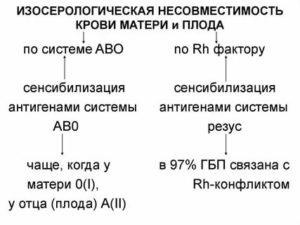 Анализ крови для определения группы и резус-фактора при беременности: для чего определяют показатели, опасности и действия конфликта на плод