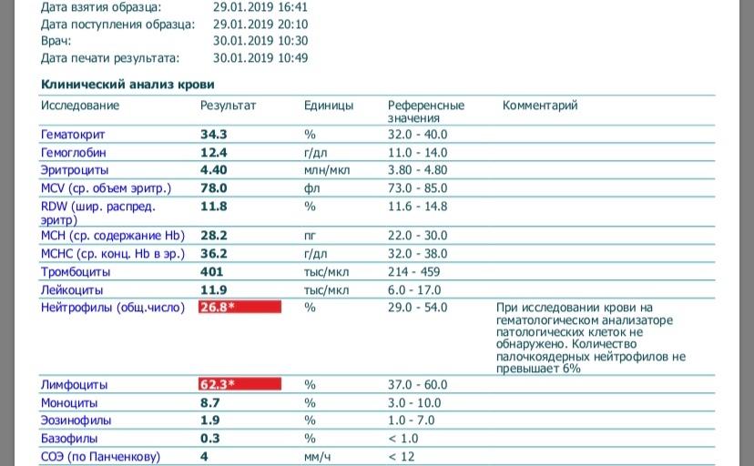 Норма моноцитов в крови новорожденного: почему их уровень увеличивается