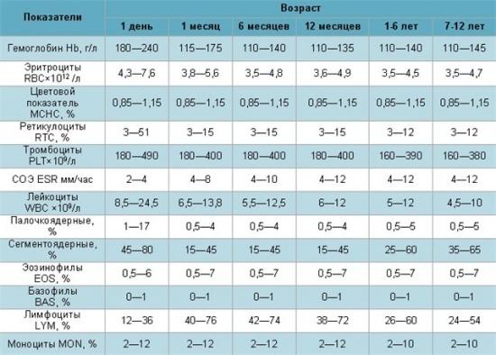Норма лимфоцитов в крови у ребенка: таблица по возрасту