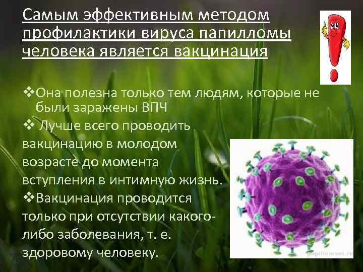 Прививка от вируса папилломы человека: особенности и правила вакцинации