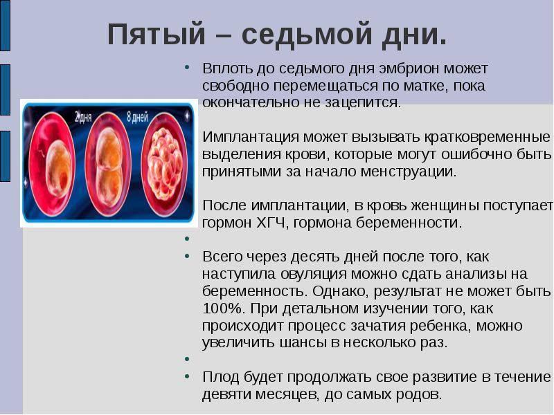 Признаки имплантации после овуляции (до задержки!)