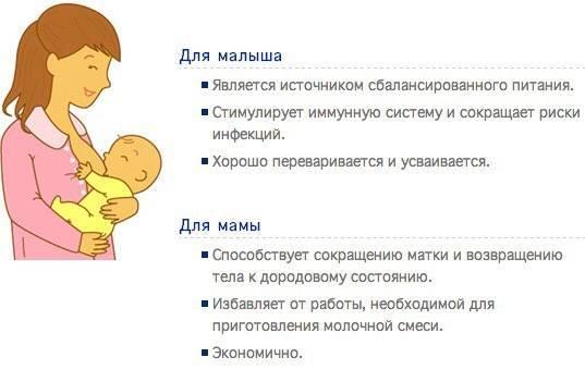 Польза грудного вскармливания для мамы и ребенка.