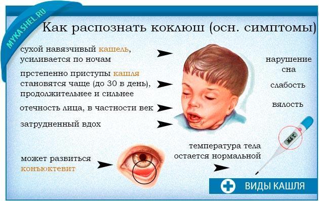 Симптоматика коклюша у детей, патогенез заболевания и особенности лечения: действуем без промедления!