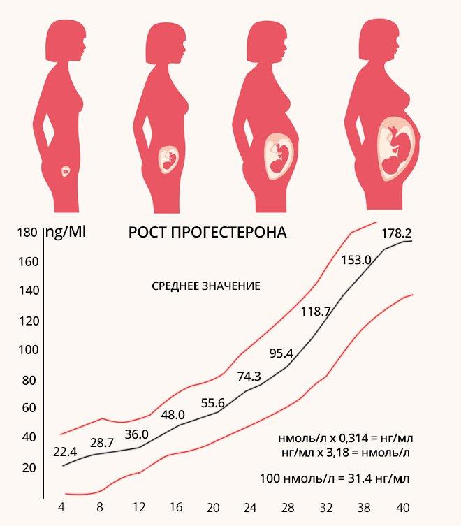 Как влияет прогестерон на беременность?