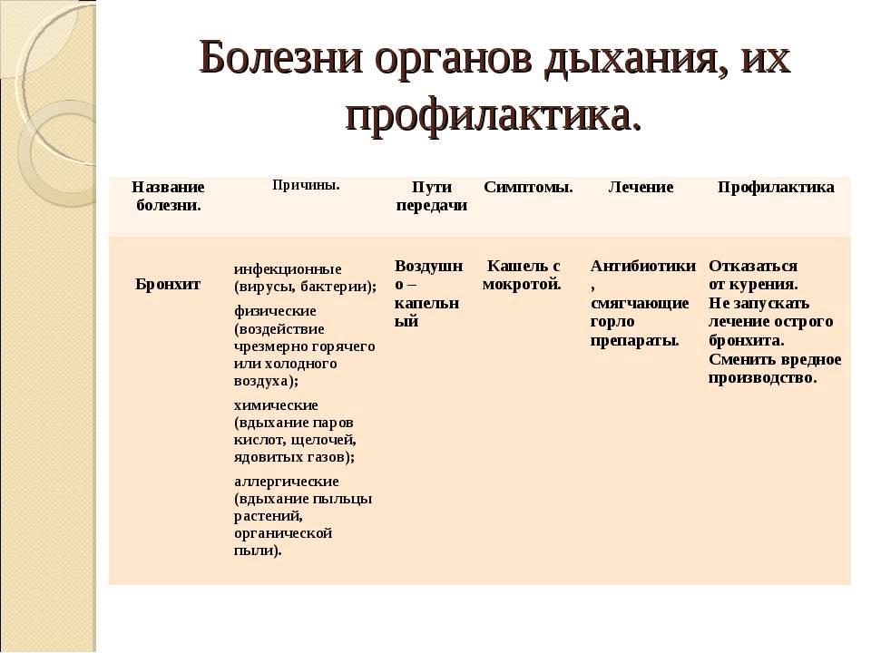 Профилактика бронхита: первичная и вторичная. основные принципы профилактических методик, народные способы