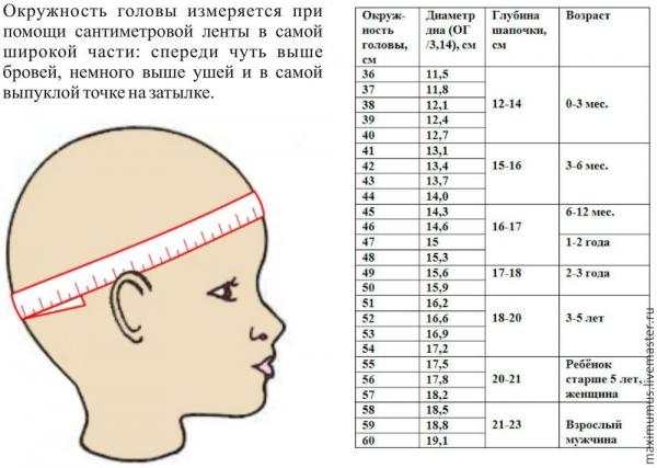 Каким должен быть размер головы ребенка по месяцам: таблица