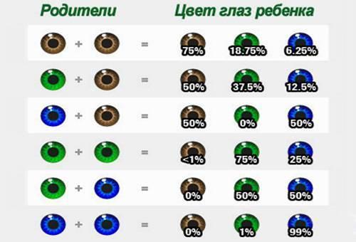 Почему у детей со временем меняется цвет глаз?  - «как и почему»
