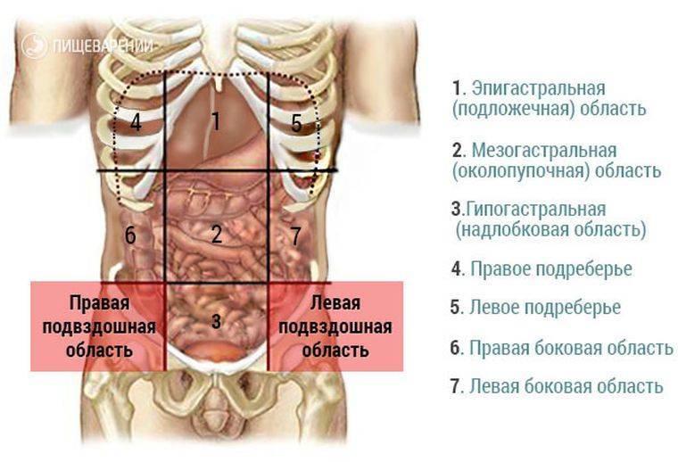 Болит кишечник при беременности: причины, лечение