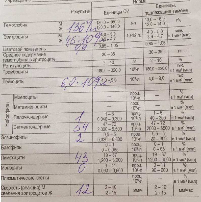 Мононуклеоз у детей анализы крови и расшифровка