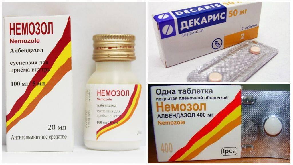 Симптомы и лечение глистов у детей медикаментозно препаратами и народными средствами
