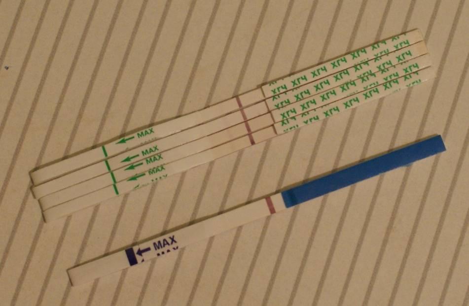 8 дней задержка: тест отрицательный и нет никаких признаков беременности