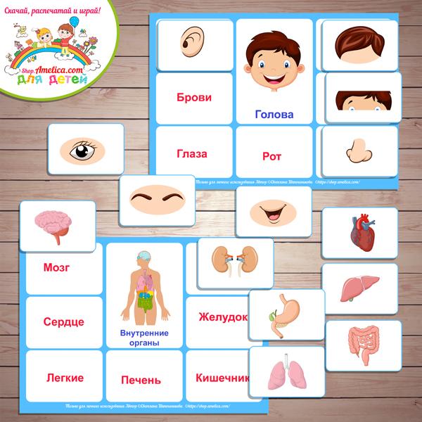 Дидактические игры и игровые упражнения по формированию умения составлять множества из отдельных элементов. воспитателям детских садов, школьным учителям и педагогам - маам.ру