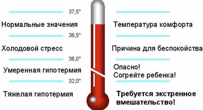 Температура тела у грудничков – норма и возможные отклонения