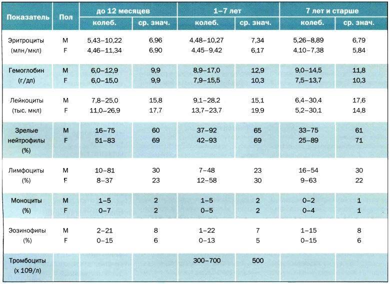 Общий анализ крови у детей. расшифровка результатов, показатели нормы и где можно сдать общий анализ крови ребенку?