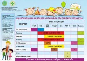 В детский сад без прививок: не берут в садик, может ли посещать ребенок, каких не возьмут, что делать, как пойти (попасть)