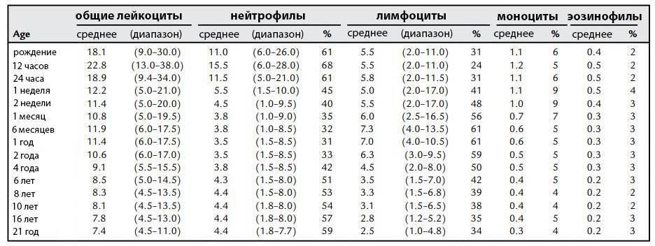 Повышены моноциты в крови у ребенка: причины, общий анализ, норма, таблица