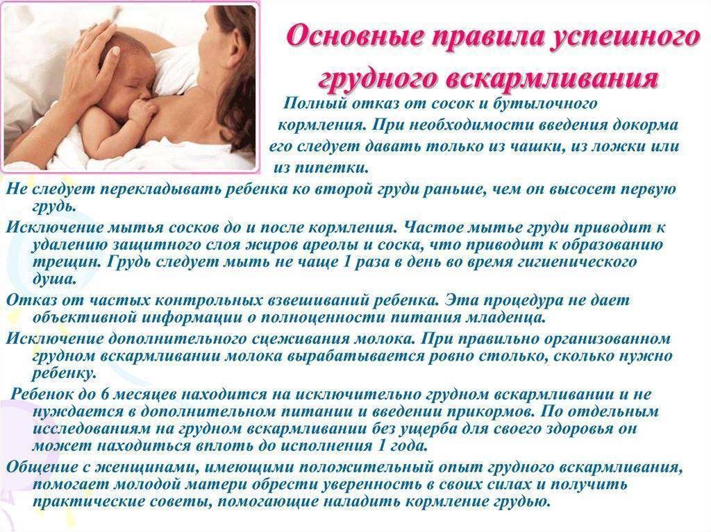 Продукты, повышающие лактацию | уроки для мам