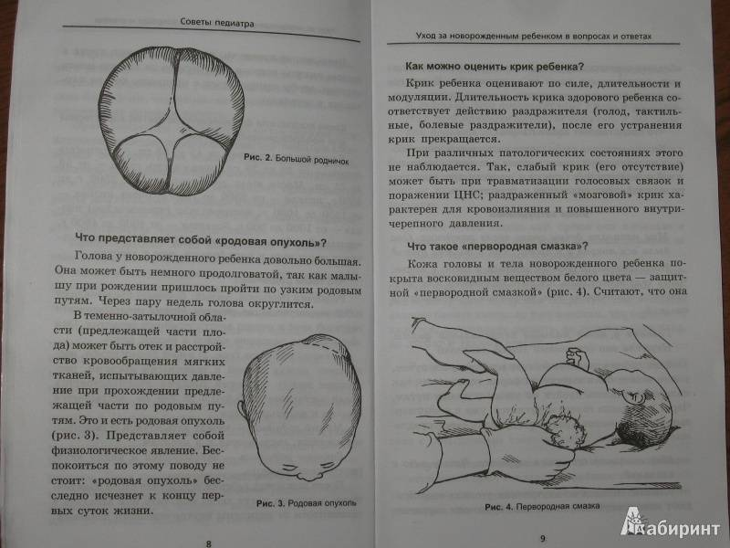 Читать книгу советы педиатра. питание ребенка от рождения до трех лет. в вопросах и ответах н. в. ежовой : онлайн чтение - страница 3