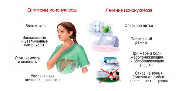Инфекционный мононуклеоз диета. диета при мононуклеозе – спасаем иммунитет | школа красоты