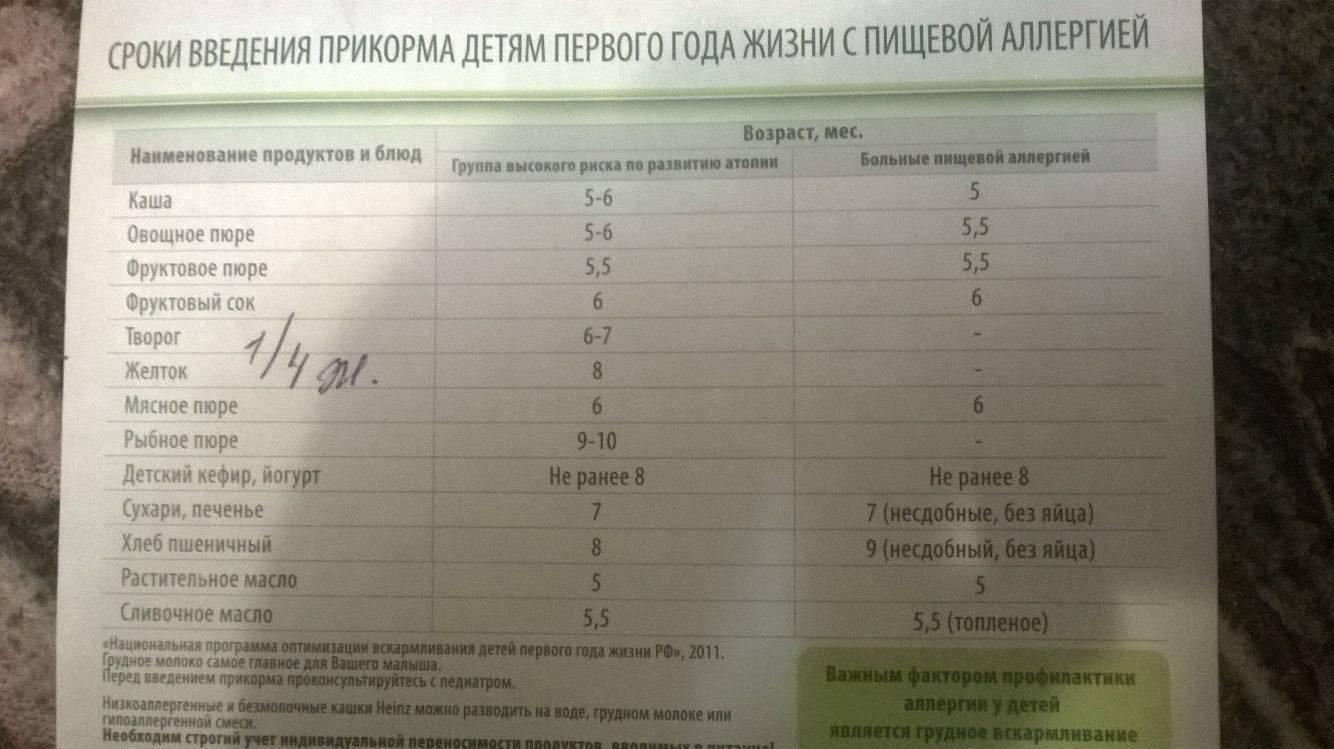 Схема введения прикорма по новым правилам: что изменилось - parents.ru