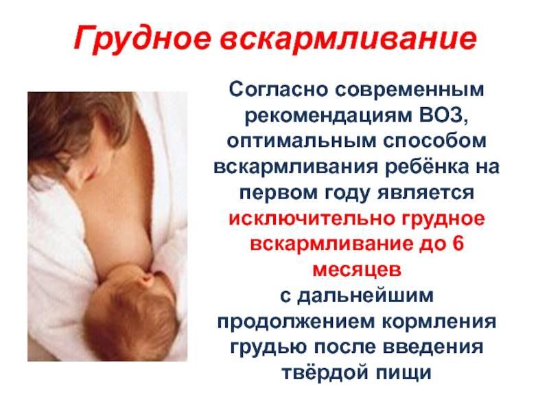 До какого возраста кормить ребенка грудным молоком, до скольки месяцев или лет полезно гв: мнение доктора комаровского, воз и ассоциации педиатров