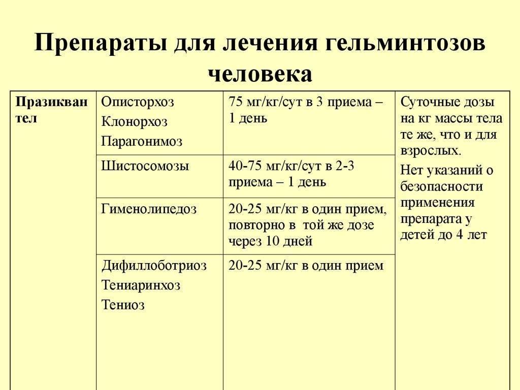 Как развивается описторхоз у детей, что входит в диагностику и лечебные мероприятия - kardiobit.ru