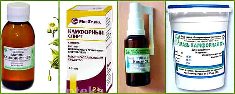 Лечение уха камфорным маслом при отите у взрослых и детей дома
